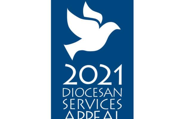 dol_dsa_logo_2021_dove_blue_box